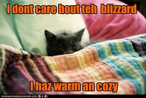 I dont care bout teh  blizzard