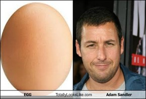 EGG Totally Looks Like Adam Sandler