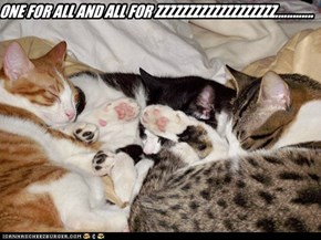ONE FOR ALL AND ALL FOR ZZZZZZZZZZZZZZZZZZZ.............