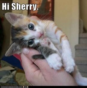 Hi Sherry.