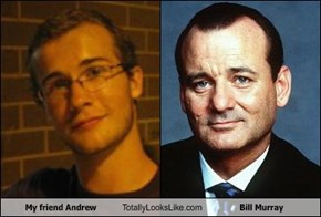 My friend Andrew Totally Looks Like Bill Murray