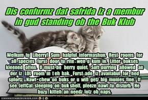 Offishul JeffCatsBookClub Memburship Kard for safrida