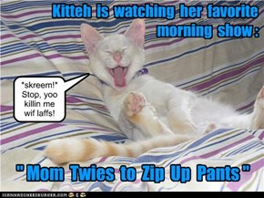 Kitteh is watching her favorite morning show.