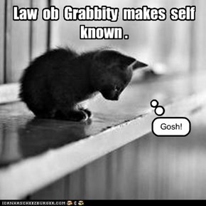 Law  ob  Grabbity  makes  self  known .