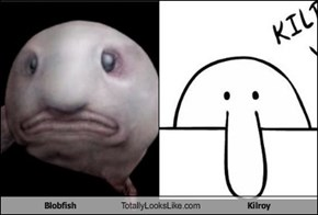 Blobfish Totally Looks Like Kilroy