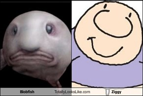 Blobfish Totally Looks Like Ziggy