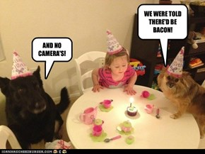 WE WERE TOLD THERE'D BE BACON!