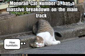 Monorail  Cat  Number  3   has  a  massive  breakdown  on  the  main  track .