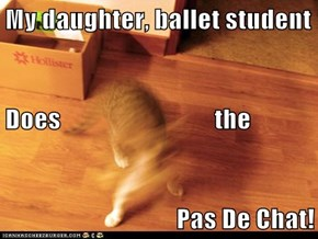 My daughter, ballet student Does                              the Pas De Chat!