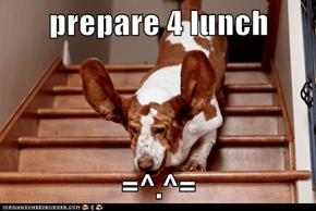prepare 4 lunch  =^.^=