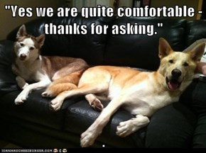 """Yes we are quite comfortable - thanks for asking.""  ."