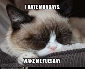 I HATE MONDAYS.
