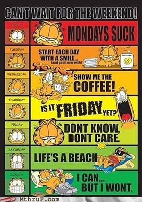 Garfields work advice