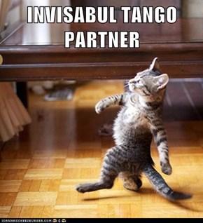 INVISABUL TANGO PARTNER