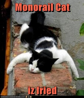 Monorail Cat  iz fried