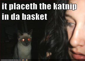 it placeth the katnip in da basket