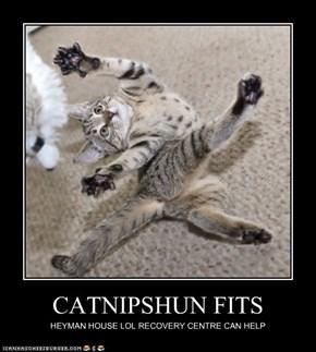 CATNIPSHUN FITS