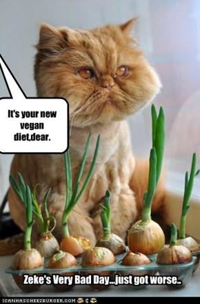 It's your new vegan diet,dear.