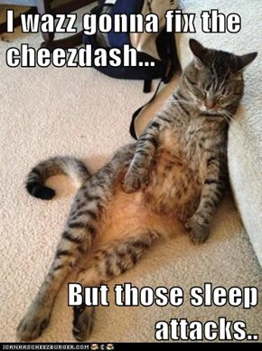 I wazz gonna fix the cheezdash...  But those sleep attacks..