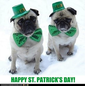 Pug St. Patrick's Day
