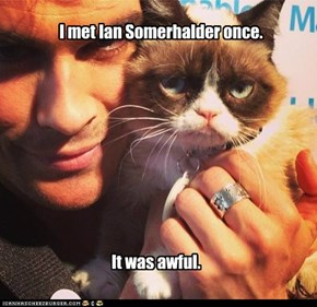 Grumpy Cat Meets Ian Somerhalder