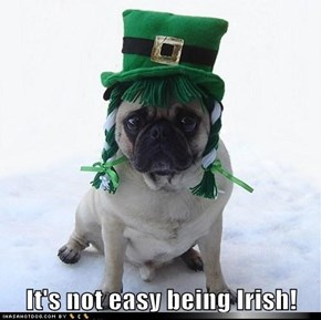 Irish Pug St. Patrick's Day