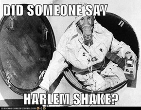 DID SOMEONE SAY  HARLEM SHAKE?