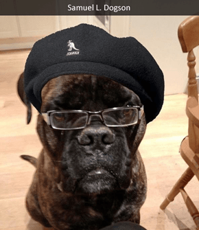 Samuel L. Dogson wants you to SAY WOOF AGAIN. SAY. WOOF. AGAIN.