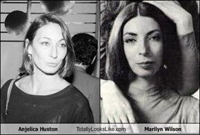 Anjelica Huston Totally Looks Like Marilyn Wilson