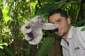 Slothbomb