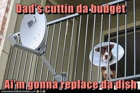 Dad's cuttin da budget  Ai'm gonna replace da dish