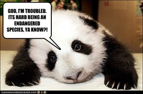 GOD, I'M TROUBLED. ITS HARD BEING AN ENDANGERED SPECIES, YA KNOW?!