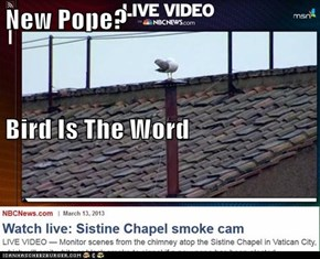 New Pope? Bird Is The Word