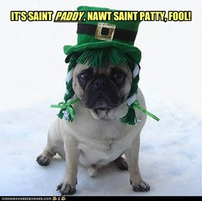 It's Saint Paddy, nawt Saint Patty, fool!