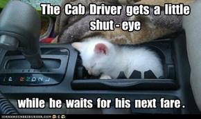The  Cab  Driver  gets  a  little  shut - eye