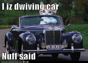 I iz dwiving car  Nuff said