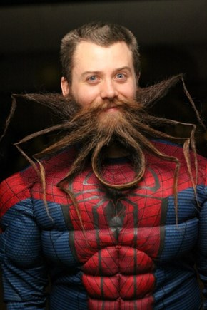 Spider Beard, Spider Beard, Does Whatever a Spider... D'oh!