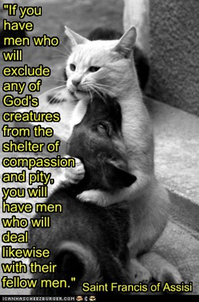 """If you  have  men who will  exclude  any of  God's creatures from the  shelter of compassion and pity, you will  have men who will  deal  likewise  with their fellow men."""