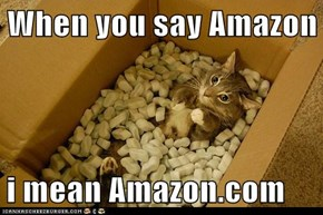 When you say Amazon  i mean Amazon.com