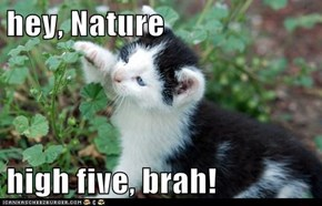 hey, Nature  high five, brah!