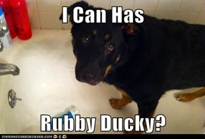 I Can Has  Rubby Ducky?