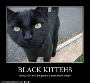 BLACK KITTEHS