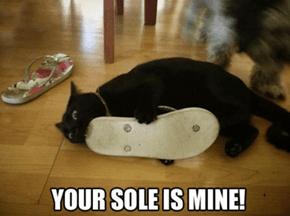 Mmm... Sandal