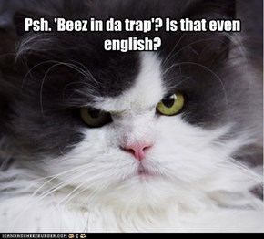 Psh. 'Beez in da trap'? Is that even english?