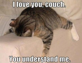 Couch Understands My Pain in a Way You Never Will