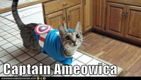 Captain Ameowica