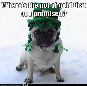 Where's the pot of gold that you promised?
