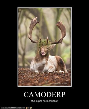 CAMODERP