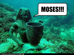 MOSES!!!