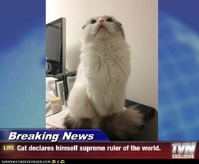 Breaking News - Cat declares himself supreme ruler of the world.